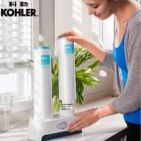 科勒KOHLER可芙家用厨房净水器净饮机直饮机K-5339T(BJ)-KT400餐厨多效款