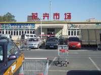 特力屋北京金四季店―花卉区