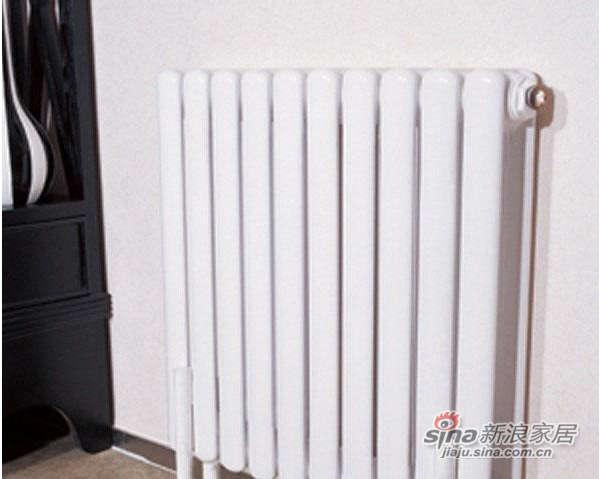 九鼎鼎立系列5BPL600钢制散热器