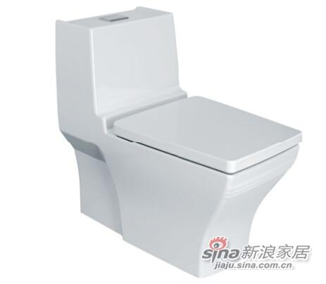 新典4.8升节水型连体座厕(底排305mm)-0