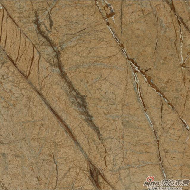 特地大理石瓷砖-雨林棕-2