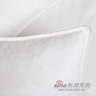 全棉平纹鹅毛枕芯-2