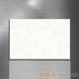 陶一郎-时尚靓丽系列-釉面砖TY45106(300*450mm)
