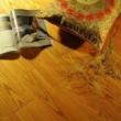 林昌地板仿古系列-白腊木