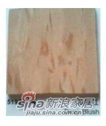 阿姆斯壮龙彩PVC地板51922 -0