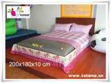 TATAME水床系列 大双人海绵水床(粉色) QP02006