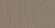 玉兰壁纸NFD185401