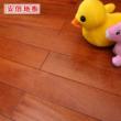 安信地板 铁苏木