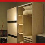 欧嘉璐尼 A20+WE20-1二门外推拉衣柜