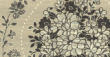 玉兰壁纸TPC208801