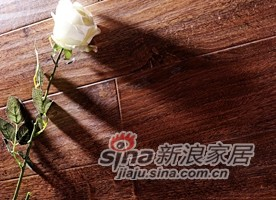 春天地板强化——七彩印象yx-8