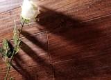 春天地板强化――七彩印象yx-8