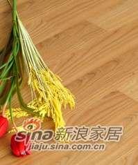 肯帝亚地板强化系列―EM系列HM3001双拼柚木-0
