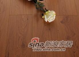春天地板强化――七彩乐章yz-6-0