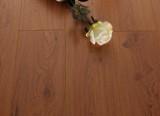 春天地板强化――七彩乐章yz-6