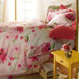 澳西奴全棉印花被套床单四件套蔷薇花影
