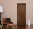 TATA油漆门 室内门