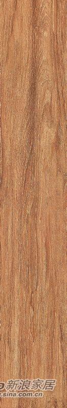 箭牌瓷砖樱木-6