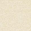 安华瓷砖新西米NF080492P