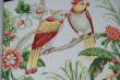柔然壁纸阿麦瑞A9021372