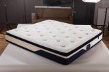 悦脊双眠床垫