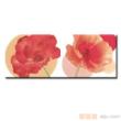 红蜘蛛瓷砖-墙砖(腰线)-RR43044B-H-2(120*300MM)