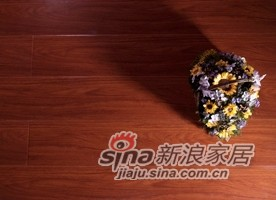 春天地板强化——七彩水晶sj-2