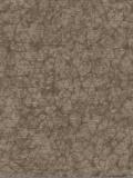 欣旺壁纸cosmo系列融合CM5347A
