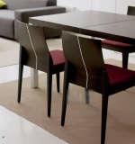 玉庭家具餐桌8240