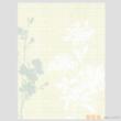 凯蒂纯木浆壁纸-艺术融合系列AW52019【进口】