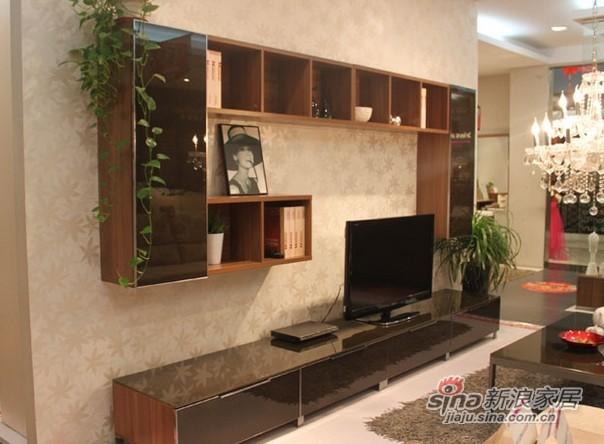 耐特利尔现代风格电视柜-0