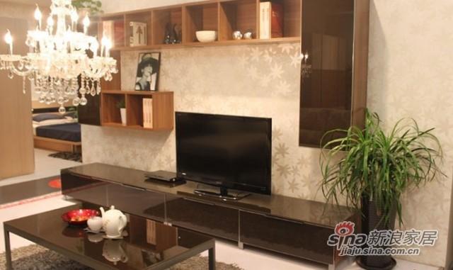 耐特利尔现代风格电视柜
