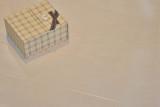 林昌地板--11系列--青春力量EOL1110