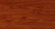 林昌地板科技高清系列-苹果木