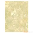 凯蒂纯木浆壁纸-艺术融合系列AW52046【进口】