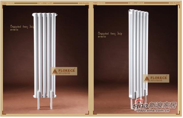 佛罗伦萨 但丁Dante 钢制暖气片 家用散热器 暖气 大水道采暖