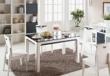 瑞森玻璃面系列RS159#餐桌椅