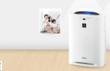 加湿型空气净化器  KC-CD20-W