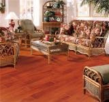 安信番龙眼实木地板