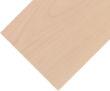 燕泥实木地板系列-白桦木