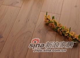 春天地板强化――七彩乐章yz-7-0