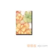 红蜘蛛瓷砖-墙砖(花片)-RY43000R5(300*450MM)