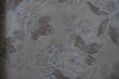 柔然壁纸卡伊曼1031852