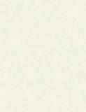 欣旺壁纸cosmo系列配角CM5350A