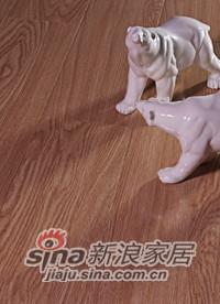 春天地板强化——七彩阳光YG-3