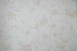 柔然壁纸尤兰达1007631