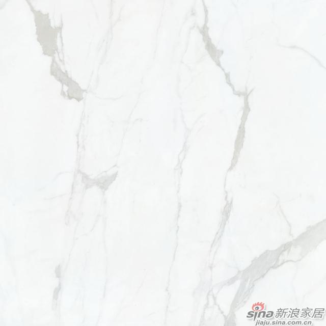 意大利雪花白 Italy snow white-3