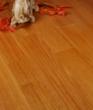 宏鹏地板金铂面防潮实木系列―纤皮玉蕊WFT-11-01A
