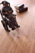 富得利强化地板印象14418