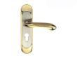雅洁AS2051-H3061-74中锁英文铜锁体+70中文铜锁胆